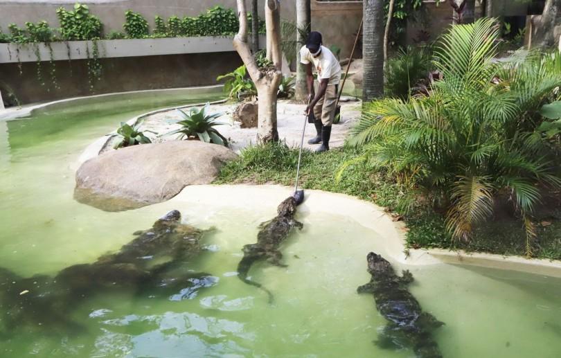 BioParque do Rio, antigo Jardim Zoológico, é inaugurado